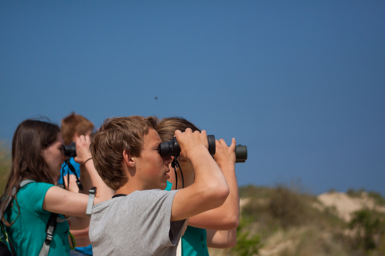Zomerkampen voor jongeren in de natuur!